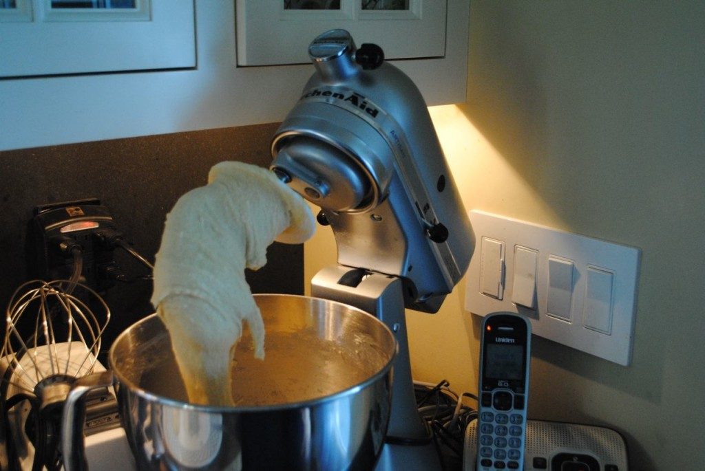 Charis of S. A. T. gourmet photo of kitchen aide mixer kneading dough for chocolate babka recipe