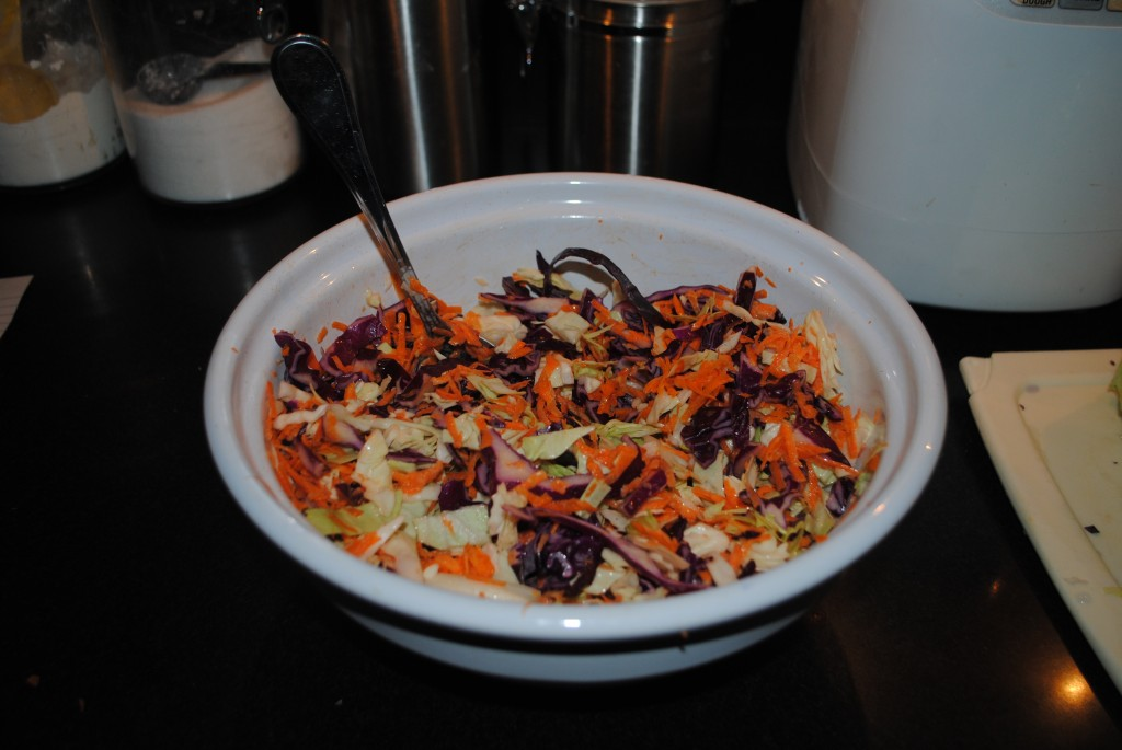 "Photo of coleslaw with dressing in large white bowl ready to serve for blog post on coleslaw recipe and coleslaw dressing recipe by charis freiman-mendel, author of ""cook your way through the s.a.t."""