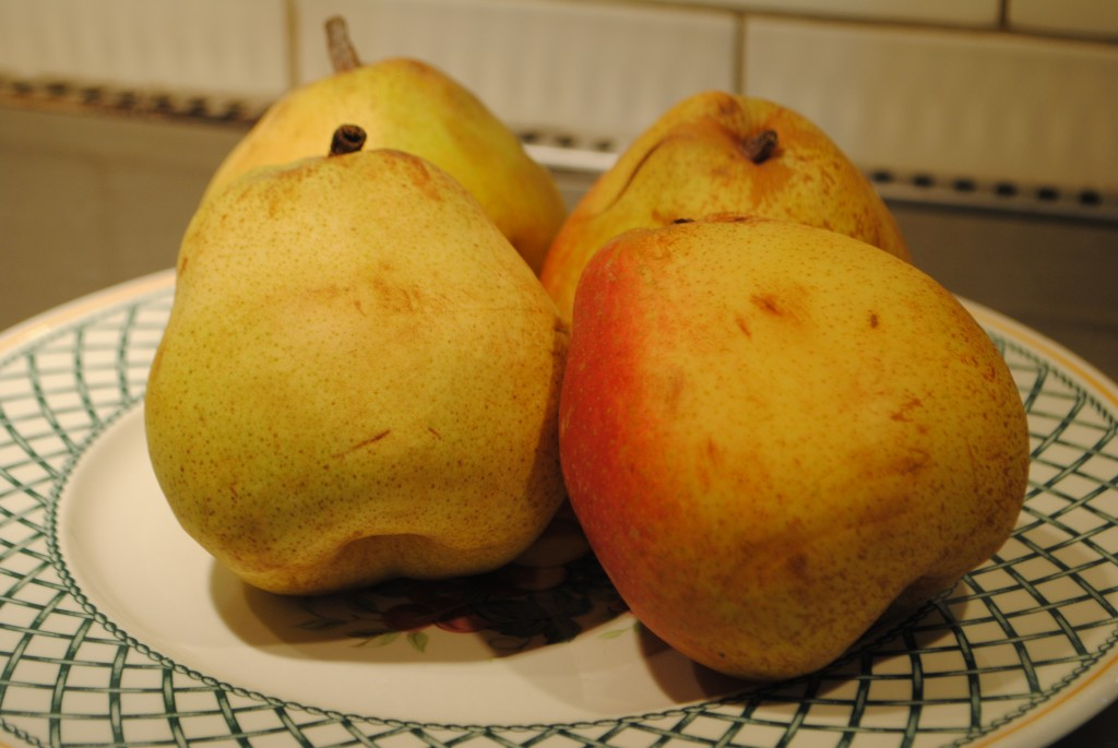 Photo of large pears, possibly Japanese La France pears, for blog post on Possibly Pear Sauce by Charis Freiman-Mendel, author of COok Your Way Through The S.A.T.