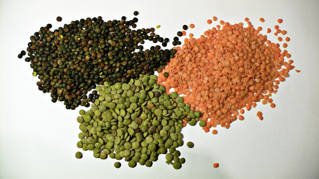 Photo of red lentils, brown lentils and green lentils for molasses lentil soup post by charis freiman-mendel, author of cook your way through the s.a.t.