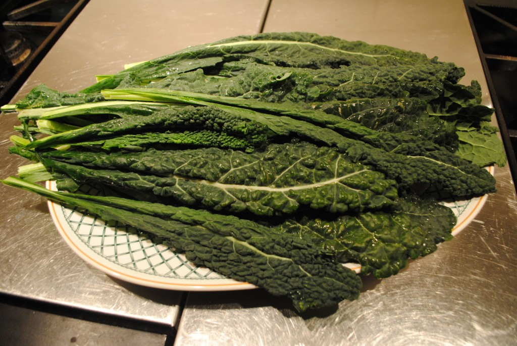 Photo of lacinato kale, also known as dinosaur kale for blog post on superbowl superfood kale chips by charis freiman-mendel, author of cook your way through the s.a.t.