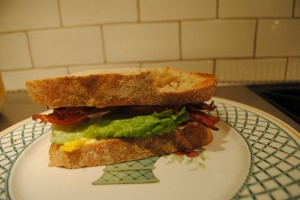 "Photo of the completed sandwich for blog on Recipe of ""Spanglish"" sandwich, for www.SATgourmet.com, a website by author of Cook Your Way Through The S.A.T., Charis Freiman-Mendel."