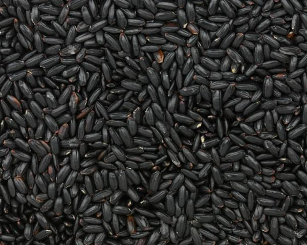 "Photo of black Chinese forbidden rice for post by charis freiman-mendel, author of ""cook Your way through the s.a.t."""