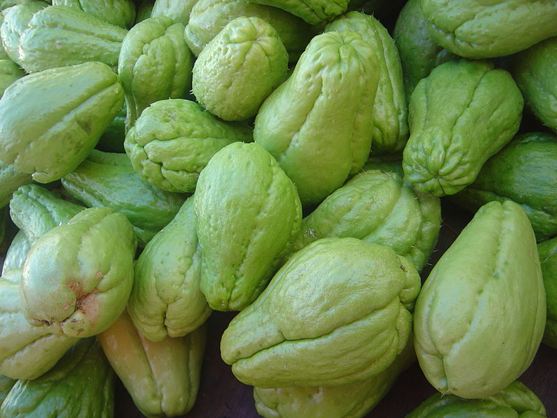 "Photo of mirliton or chayote squash for post by charis freiman-mendel, author of ""cook your way Through The S.A.T."", on book review of ""words that make a difference"""