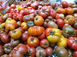 "Photo of variety of heirloom tomatoes for Earth Day Tomatoes blog by charis freiman-mendel, author of ""cook your way through the s.a.t."""