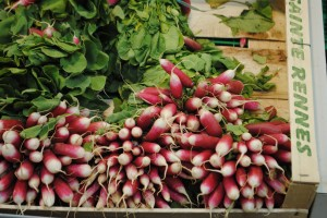 "Photo of fresh radishes for blogpost, ""Pictures from France: Part Trois,"" on website www.SATgourmet.com, by author of Cook Your Way Through The S.A.T., Charis Freiman-Mendel."