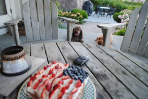 "Photo of Fourth of July Cake for blog post, ""Fourth of July Cake"" on website, www.SATgourmet.com, by author of Cook Your Way Through The S.A.T., Charis Freiman-Mendel."