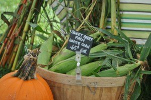 "Photo of corn for blog post, ""A Trip To The Farmer's Market,"" on www.SATgourmet.com, by author of Cook Your Way Through The S.A.T., Charis Freiman-Mendel."