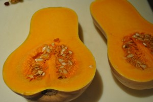 "Photo of butternut squash for blog post, ""Butternut Squash and Arugula Salad,"" on www.SATgourmet.com, by author of Cook Your Way Through The S.A.T., Charis Freiman-Mendel."